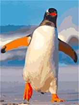 Painting by Numbers Penguin for Adults Kids DIY pre-Printed Canvas Oil Painting with Brushes and Acrylic Pigment 40 * 50cm...
