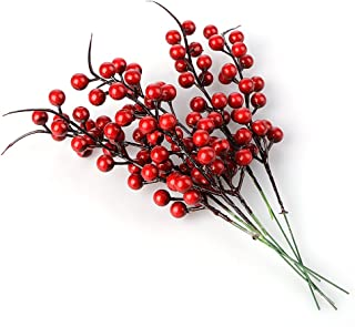 Best red berry twigs Reviews
