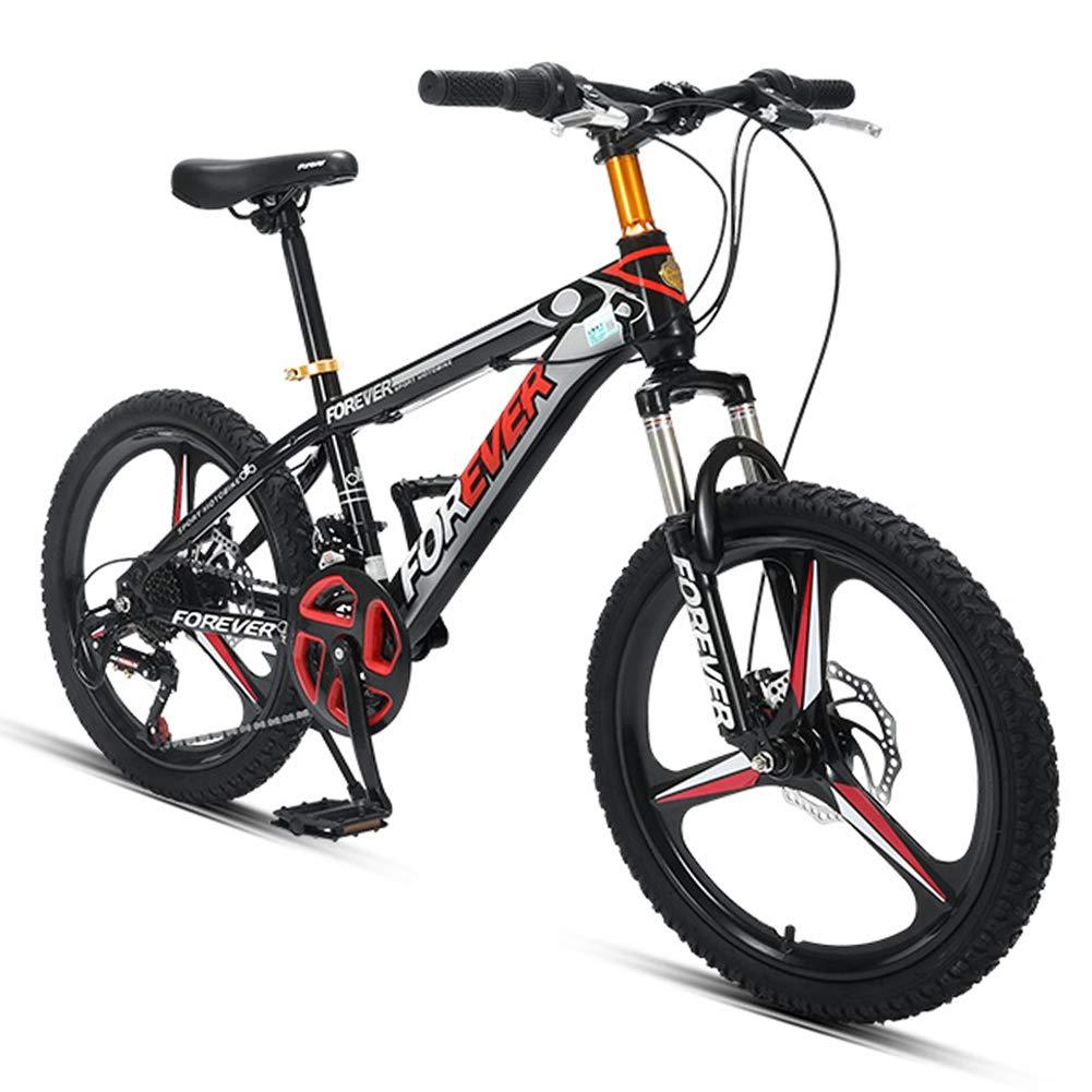 NENGGE 20 Pulgadas Niño Bicicleta Montaña, 24 Velocidades ...