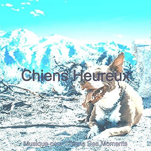 Musique pour Chiens Des Moments