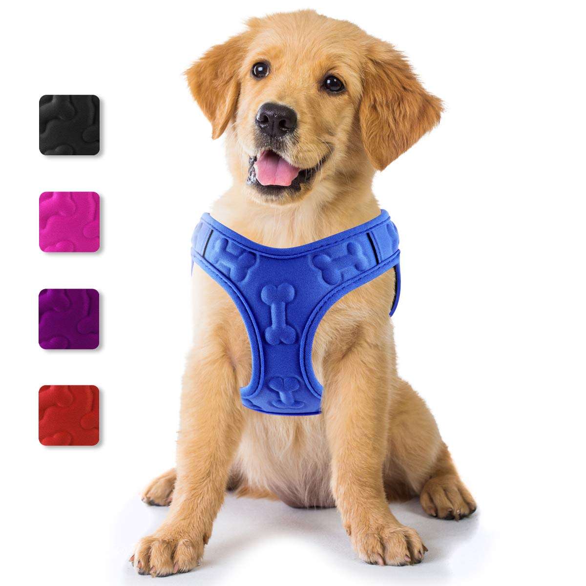 Metric USA ● Lightweight Airy No Pull Small Dog Harness Vest ● Easy to Put on /& Take Off ● Soft Padded Interior /& Exterior Puppy Harness ● Ensures Your Dog is Cool /& Comfortable X-Small, Black