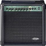 Stagg 40-Watt Guitar Amplifier with Spring Reverb - Black