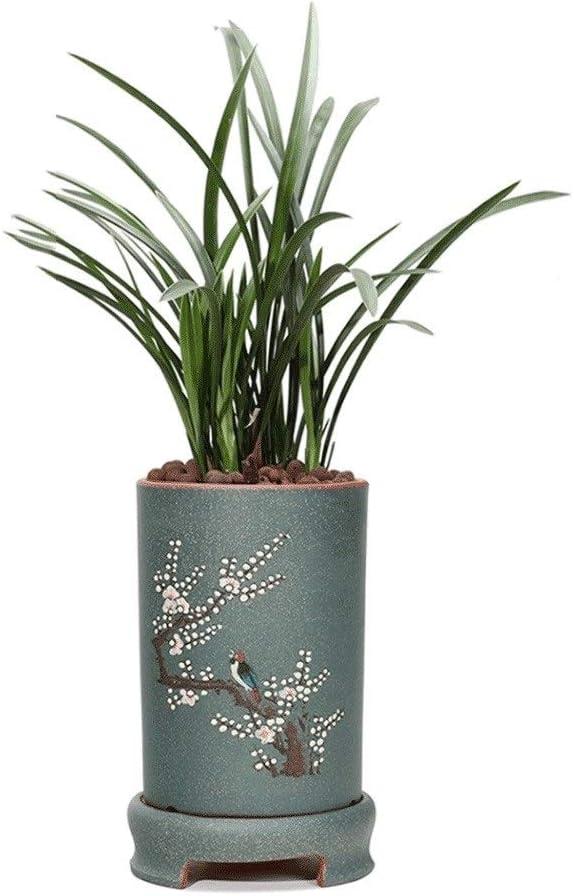 Zxb-shop Plat végétal Pot de Fleur Classique Chinois Office Home Decoration Orchid Pot de Fleur Respirant (avec Plateau) Soucoupe (Color : Blue) Yellow