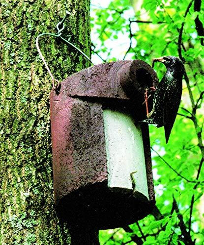 Schwegler Naturschutzprodukt 2 Vögel Nistkästen Nisthöhle Vogelhöhle Typ 3SV oval Flugloch 32 x 45 mm mit Marderschutz aus Holzbeton Höhe 28 cm Satz 2 Stück