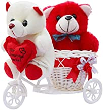 ME & YOU Romantic Cycle Teddy with Printed MDF Keychain Return Gifts for Wife Girlfriend and Sister On Birthday, Anniversa...