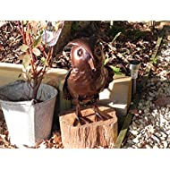 Hand Crafted Metal Owl Watering