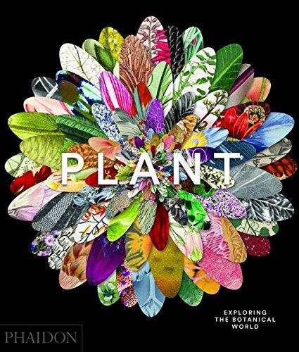 Flora. Il meraviglioso universo delle piante. Ediz. a colori
