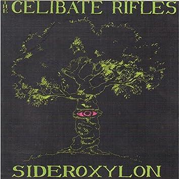 Sideroxylon