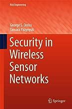Security in Wireless Sensor Networks (Risk Engineering)