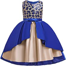 Baby Girl Flower Lace Party Baptism Dress Kids Birthday Wedding Evening Princess Dance Pageant Formal Ball Short Gown