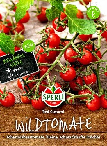 Tomate Rote Johannisbeertomate