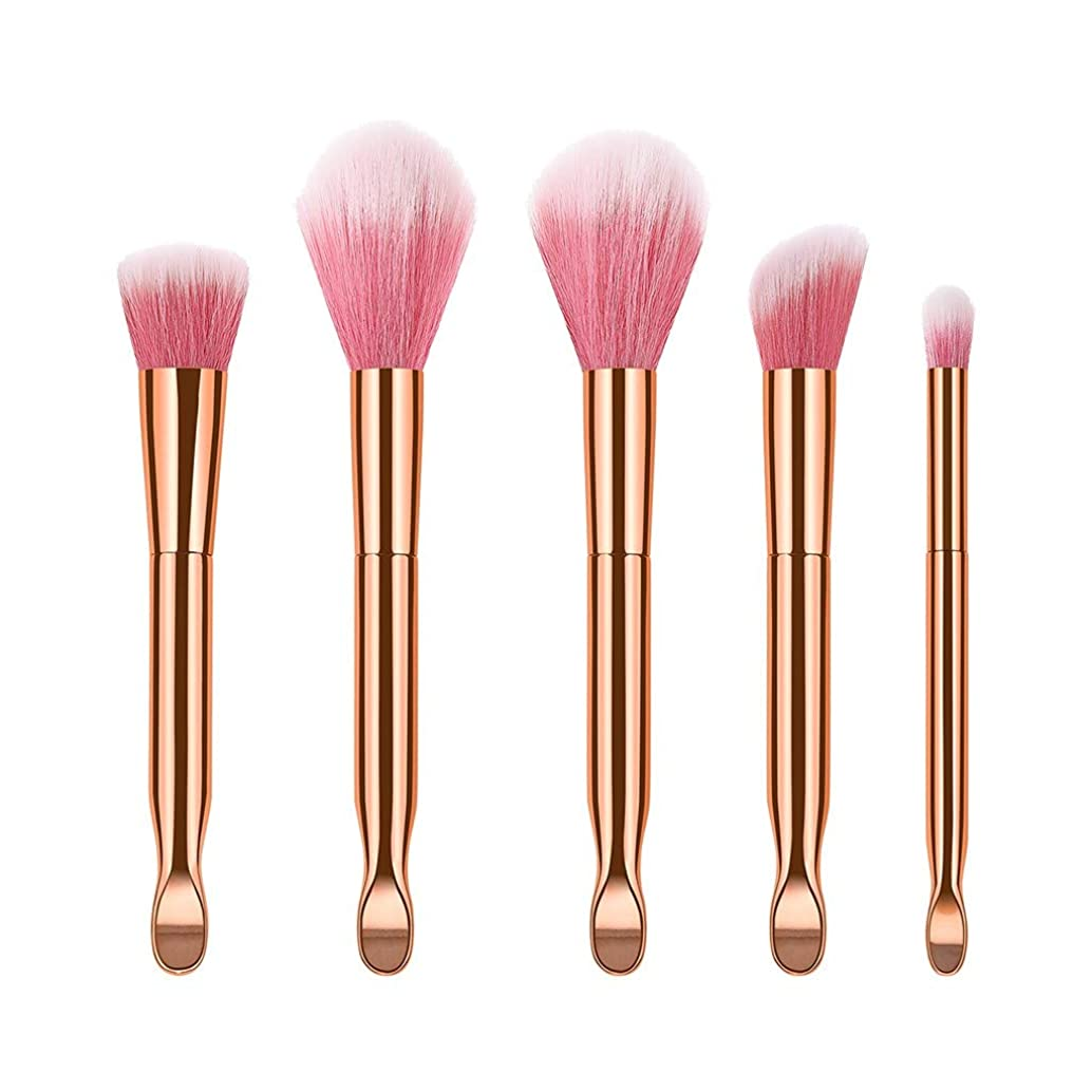 Esharing 5 Pcs Makeup Brushes, Premium Synthetic Makeup Brush Set Foundation Brush Blending Face Powder Blush Concealers Eye Shadows Makeup Brushes Kit Tools