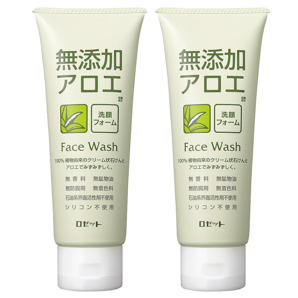 微生物いつもじゃがいもロゼット 無添加アロエ 洗顔フォーム 140g×2個パック AZ