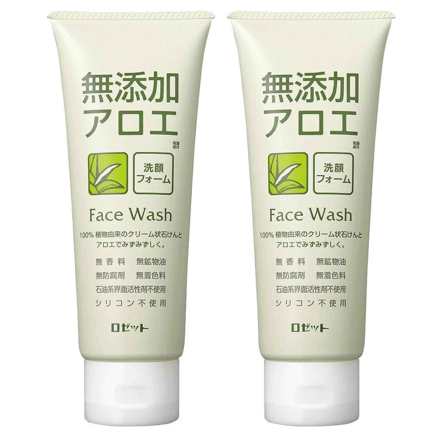 省側面飽和するロゼット 無添加アロエ 洗顔フォーム 140g×2個パック AZ