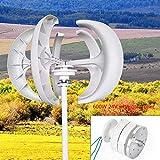 DiLiBee Generador de viento 5 tablillas 12 / 24V 600W Linternas Aerogenerador Turbina de viento DHL (blanco, 600W 24V)