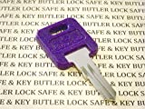 GLOBAL LINK LOCK Global Link G355 RVs Motorhome Trailer Key Cut to Key/Lock Number G355 ONE Purple Replacement Key