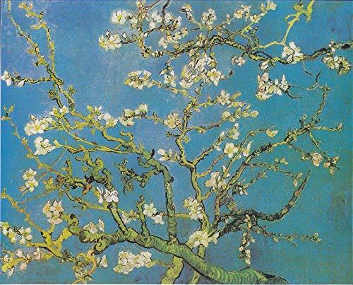 JXFFF Handgemalt DIY(40x50cm Kein Rahmen) Vincent Van Gogh Kunst Die sternenklare NachtDIY Ölfarbe durch Anzahl Kit Van Gogh SonnenblumeKinder Malen Nach Zahlen Kits Home Haus Dekor