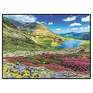 Scenery Decor Play Mats Panoramic View of Icelandic Peaks with Spring Blooms Sky and Tarn Habitat Concept Carpet for Bedroom, Kids Baby Room, Nursery Rug 6×9 Feet