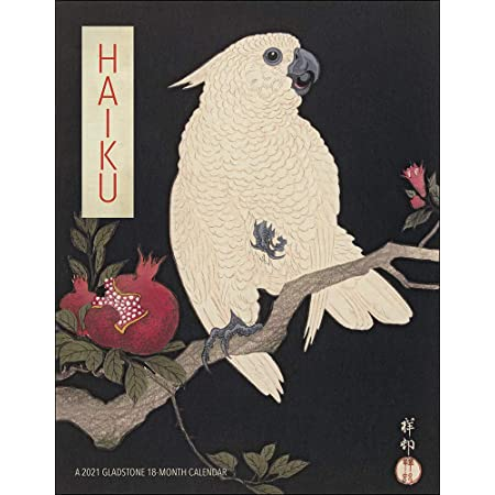 Macaws 2021 Bird Calendar 15/% OFF MULTI ORDERS!