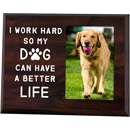 Dog Rescue Dog Lover Frame Dog Lover Gift Dog Picture Dog Photography Dog Photo Dog Photo Frame Dog Decor