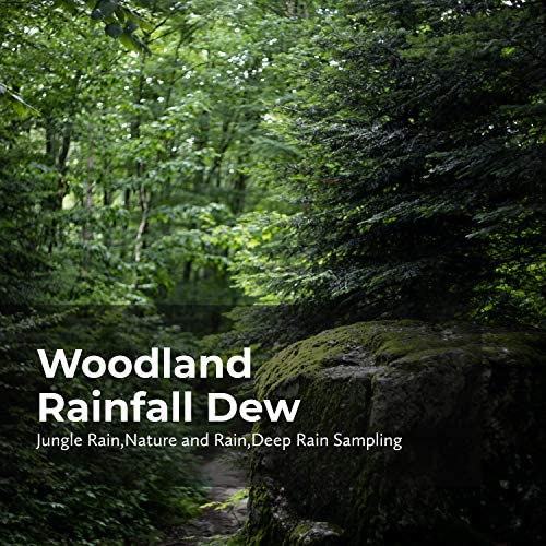 Jungle Rain, Deep Rain Sampling & Nature and Rain