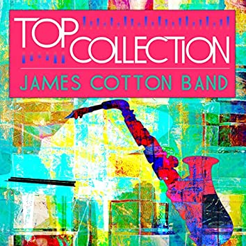 Top Collection: James Cotton Band