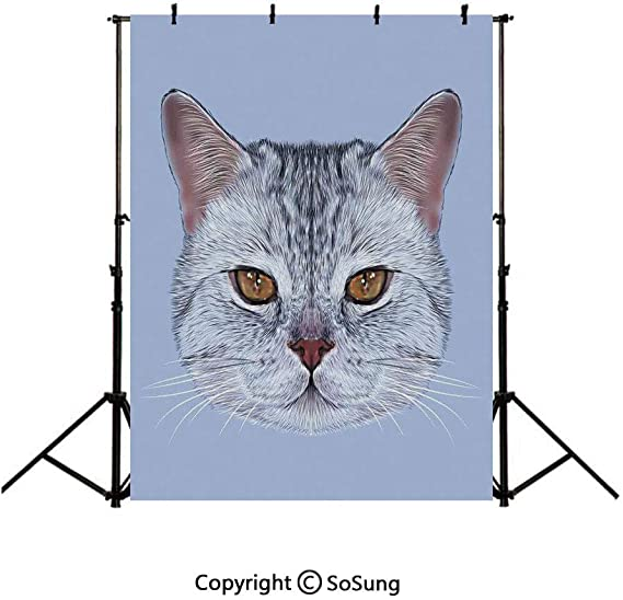 10x15 FT Backdrop Photographers,Colorful Cats in Different Poses Pussycat Domestic Friends Companions Modern Background for Kid Baby Boy Girl Artistic Portrait Photo Shoot Studio Props Video Drape
