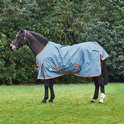 Derby House PRO - Tappeto Leggero Standard per affluenza, Faded Denim Living Corallo, 152,4 cm