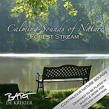 Calming Sounds of Nature (Forest Stream)