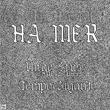 Ha Mer (feat. Unge Stüss)