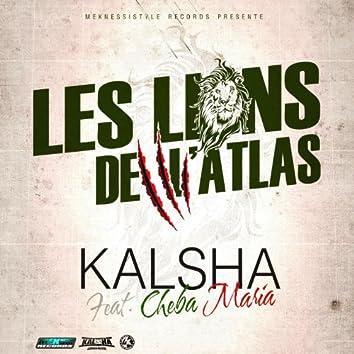 Lions de l'Atlas