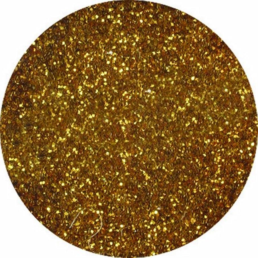 系譜マイナスロープビューティーネイラー ネイル用パウダー 黒崎えり子ジュエリーコレクション ダークゴールド0.05mm