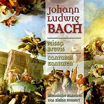 Bach: Missa Brevis & Cantatas