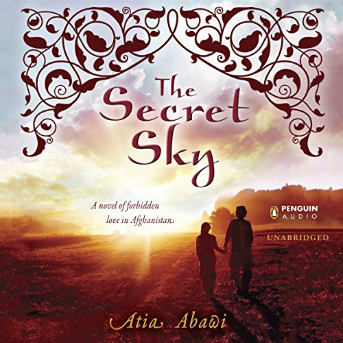 The Secret Sky audiobook cover art
