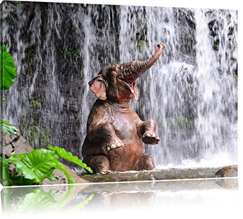 Babyelefant am Wasserfall, Format: 80x60 auf Leinwand, XXL riesige Bilder fertig gerahmt mit Keilrahmen, Kunstdruck auf Wandbild mit Rahmen, günstiger als Gemälde oder Ölbild, kein Poster oder Plakat