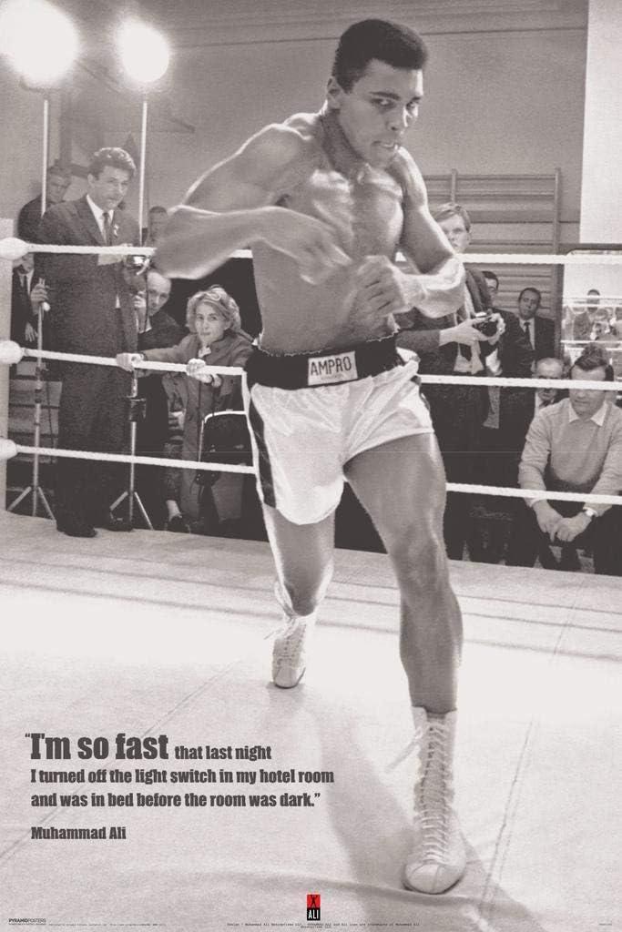 B306 Summit Muhammad Ali Custom Movie Great Boxing Star Silk Canvas Poster 24x36