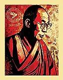 Beyond The Wall Dalai Lama Mitgefühls Inspirierende