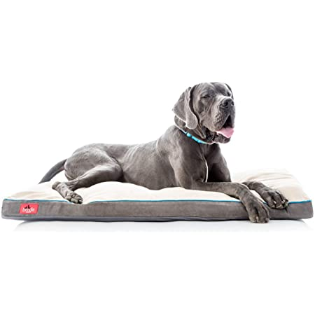 Brindle Shredded Memory Foam Dog Bed with Removable Washable Cover-Plush Orthopedic Pet Bed