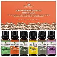 Plant Therapy Top 6 Organic Essential Oil Set - Lavender, Peppermint, Eucalyptus, Lemon, Tea Tree 100% Pure, USDA Organic, Natural Aromatherapy, Therapeutic Grade 10 mL (1/3 oz)