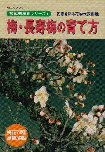 梅・長寿梅の育て方―初春を彩る花物代表樹種 (KBムック―盆栽樹種別シリーズ)