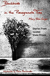 Blackbirds in the Pomegranate Tree: Stories from Ixcotel State Prison