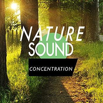 Nature Sound Concentration