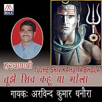 Tujhe Shiv Kahu Ya Bhola