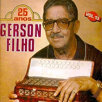 Gerson Filho 25 Anos, Vol. 13