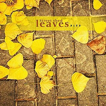 낙엽이 지는 거리