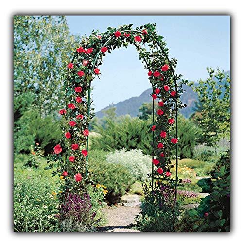 Outech Arco de Jardin Negro de 1,2 M X 2,2 M, Arco para Rosas Resistente para Varias Plantas Trepadoras, Decoración de Boda, Fiesta Nupcial, Enrejado de Arco de Metal de 1,5 M X 2,2 M