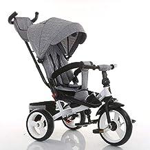 Sillas de paseo Baby Kids Children Triciclo Ride-on 3 ruedas Seguro para niños con toldo solar, almacenamiento trasero y mango antideslizante Sillas ligeras (Color : C)