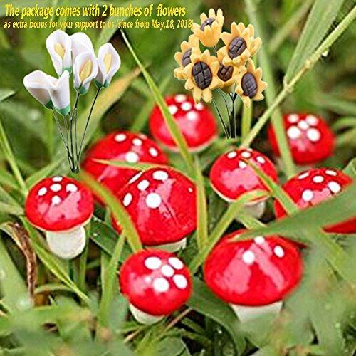 BESTIM INCUK Miniature Fairy Garden Mushroom Home Decoration Decor (INDOOR USE ONLY)