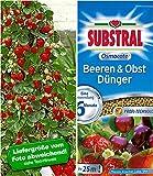 BALDUR-Garten Kletter-Erdbeere® 'Hummi®'& SUBSTRAL® 'Beeren & Obst' Düngeperls,1 Set