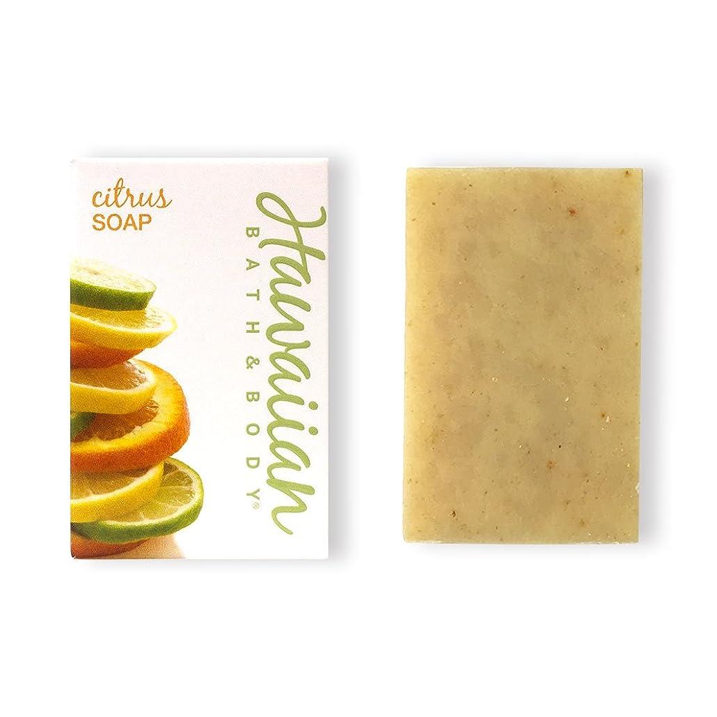 スリップシューズ打ち上げる精神医学ハワイアンバス&ボディ ハワイアン?シトラスソープ( Citrus Soap )